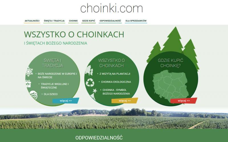 Choinki - BLOG